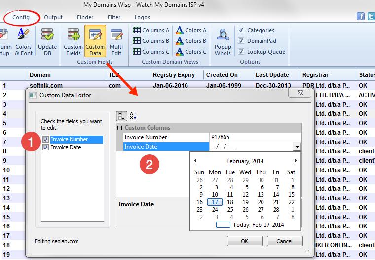 Editing Custom Data Fields