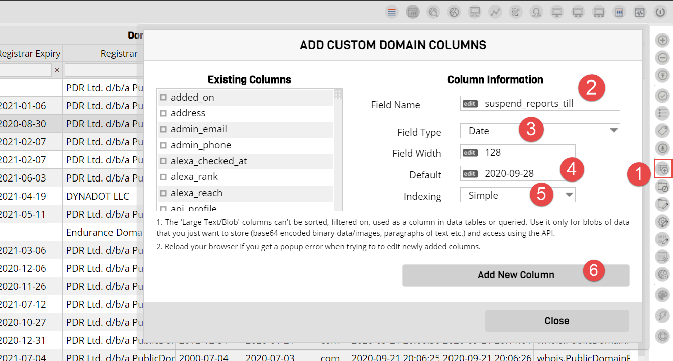 Custom Column for Domain Name Reports
