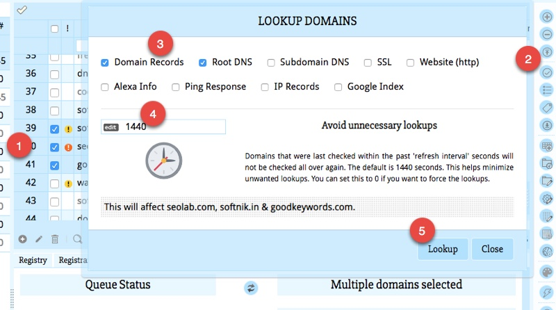 Looking up Domains