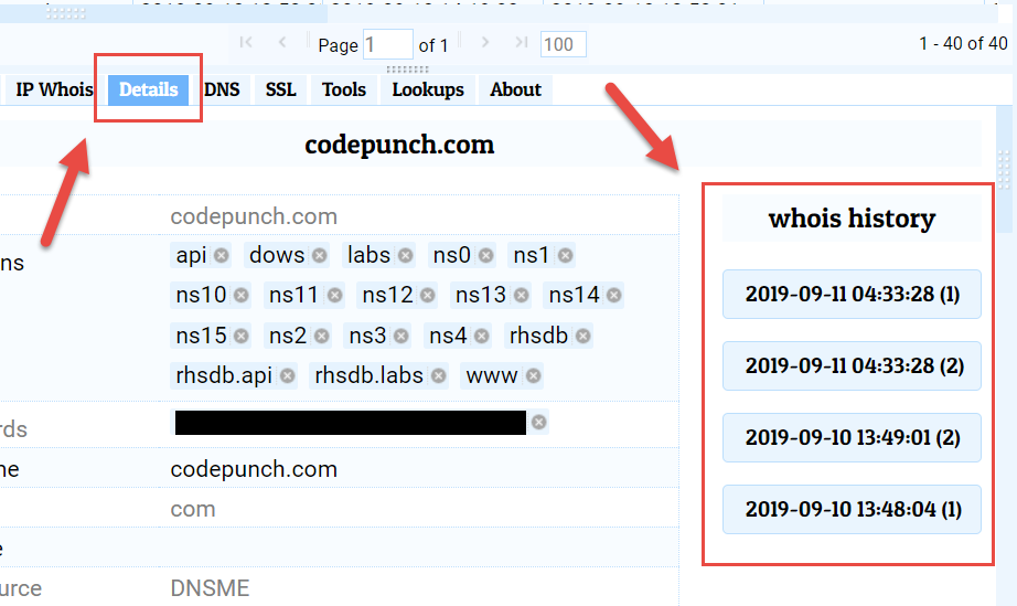Whois History Information in Details Pane